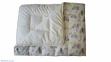 Комплект Малыш (одеяло + подушка) 2