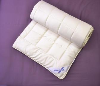 Одеяло Классик легкое